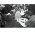 Les joueurs d'échec